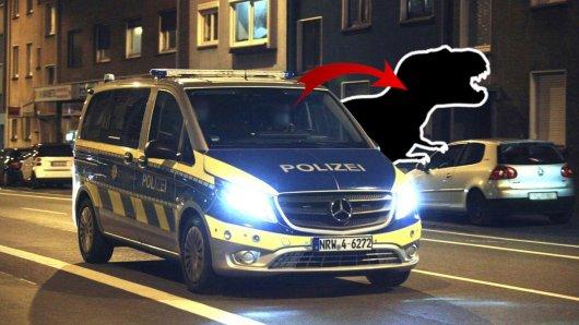 Mülheim: Ein kurioser Moment bei einer Polizeikontrolle in Mülheim ist zum Internet-Hit geworden. Jetzt reagiert die Ruhrbahn darauf. (Symbolbild)