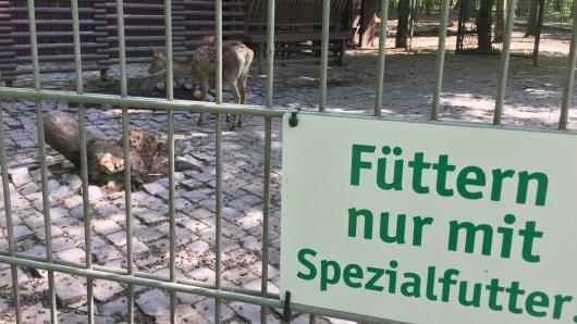 Tiere dürfen nur noch mit Spezialfutter gefüttert werden.