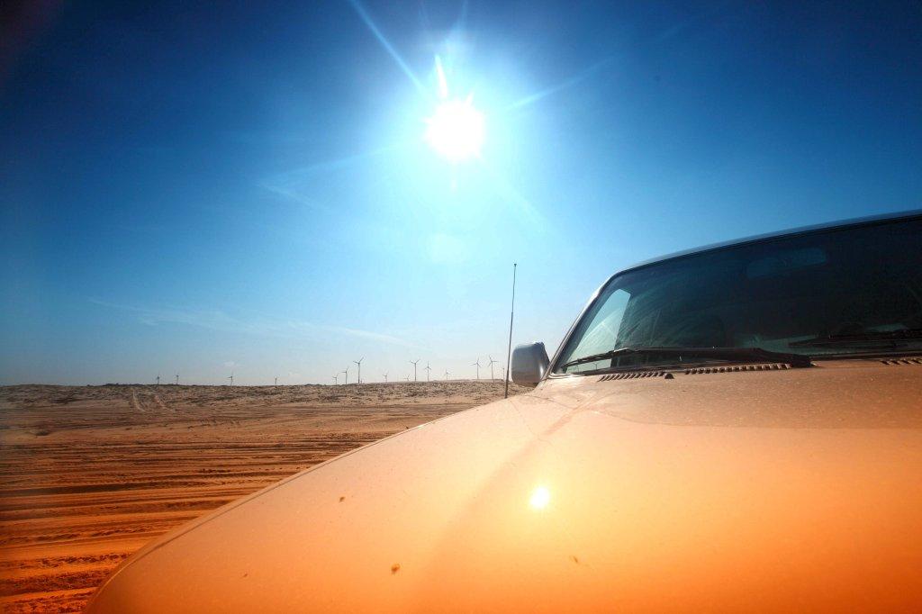 Aldi Kühlschrank Auto : In den usa hat ein vater bei hochsommerlichen temperaturen sein