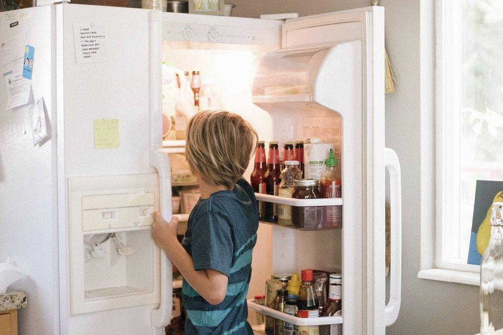 Aldi Kühlschrank Januar 2018 : Sohn zu dick mutter sichert kühlschrank mit alarmanlage region