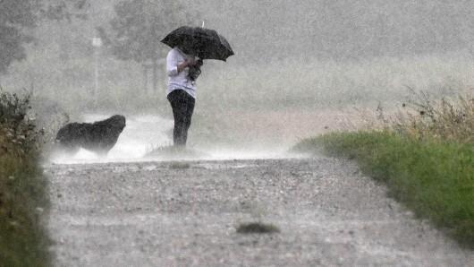dpatopbilder - Eine Spaziergängerin steht am 25.07.2017 in Köln (Nordrhein-Westfalen) mit einem Schirm und ihrem Hund im Regen. Die Erde saugt den Regen auf wie ein Schwamm. ACHTUNG: Dieses Bild hat dpa auch im Bildfunk gesendet. Foto: Henning Kaiser/dpa +++(c) dpa - Nachrichten für Kinder+++