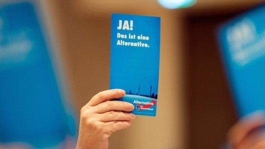 27.10.2018, Niedersachsen, Oldenburg: Beim Landesparteitag der AfD Niedersachsen werden von Parteimitgliedern blaue Stimmzettel hochgehalten, auf denen Ja! Das ist eine Alternative steht. Foto: Mohssen Assanimoghaddam/dpa +++ dpa-Bildfunk +++