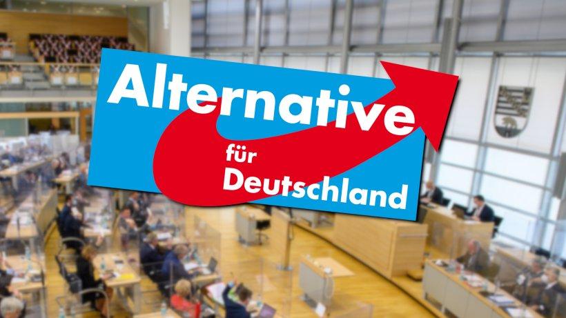 Landtagswahl Sachsen-Anhalt: AfD-Hammer! Neue Umfrage schockt - derwesten.de