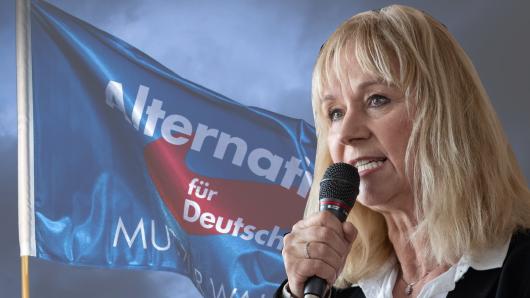 Unflätige Beleidigung: AfD-Politikerin Christina Baum eskaliert im Bundestagswahlkampf.