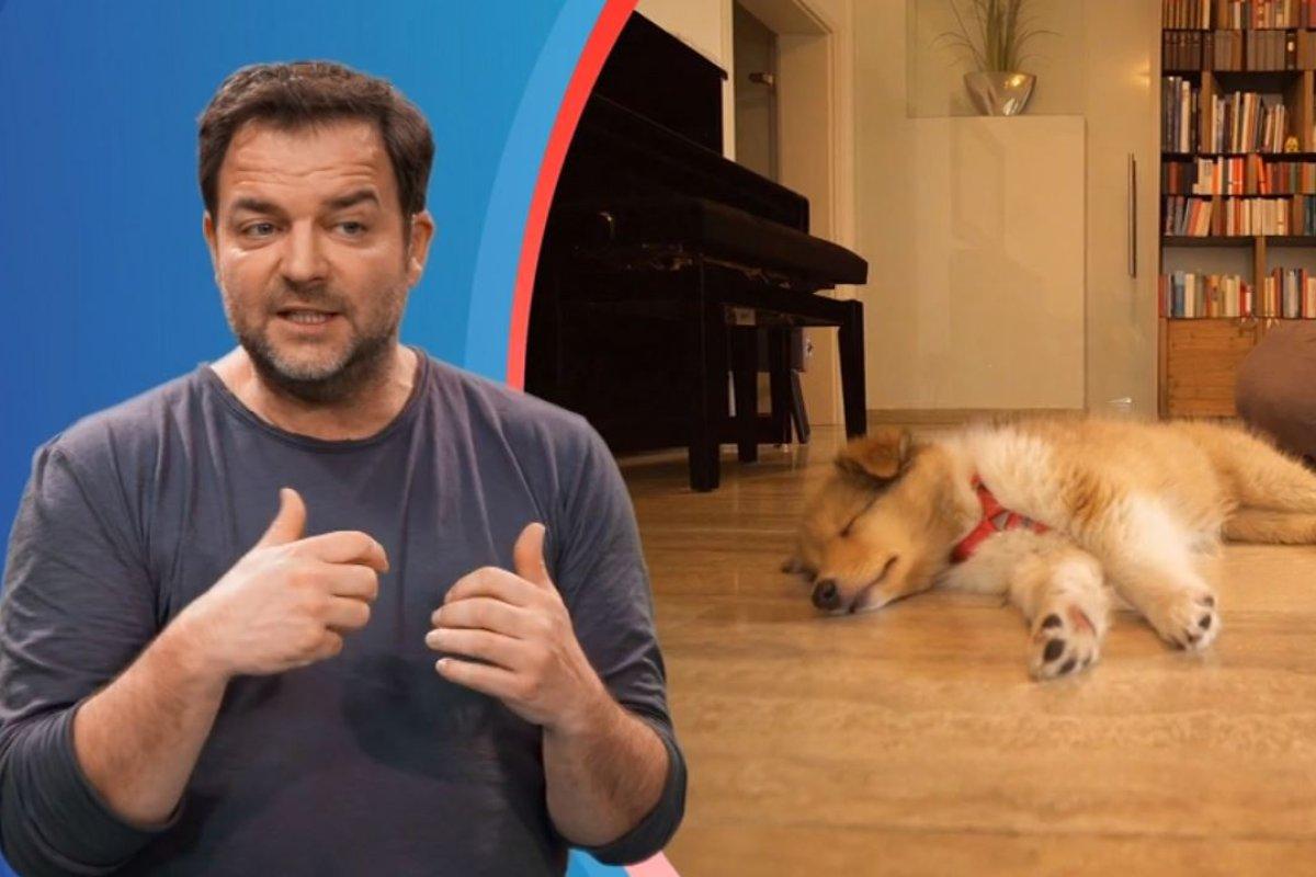 Martin Rutter Welpe Dazu Gezwungen Hundeprofi Entsetzt Nicht Nicht Nicht Derwesten De