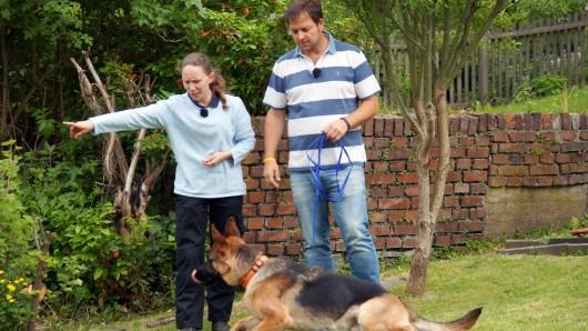 Martin Rütter und Bianca Langenbach mit Schäferhund Feedback.