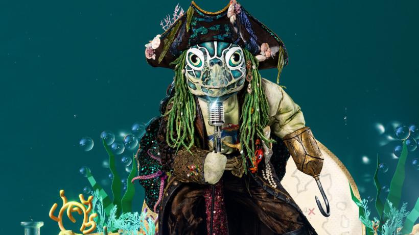 """""""Die Schildkröte"""" bei The Masked Singer: Unglaublich! Ist ER es wirklich? - Der Westen"""