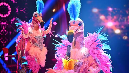 """""""The Masked Singer""""-Fans sind sich jetzt schon sicher, wer """"Der Flamingo"""" wirklich ist."""