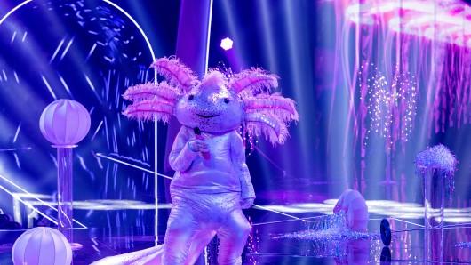"""""""Das Axolot"""" ist für jeden Spaß zu haben: Aber welcher Promi könnte sich darin zu """"The Masked Singer"""" geschlichen haben?"""