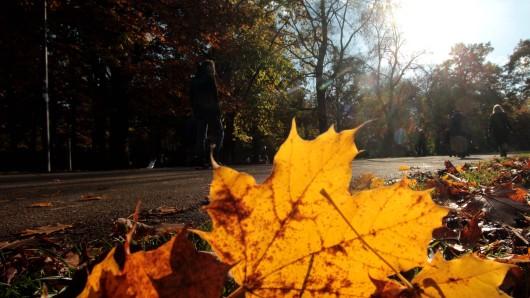 Diese Woche darfst du dich an Rhein und Ruhr noch über zweistellige Temperaturen und milde Luft freuen