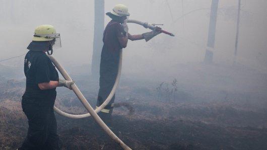 Bei einem Waldbrand in Plettenberg ist eine Leiche gefunden worden. (Symbolbild)
