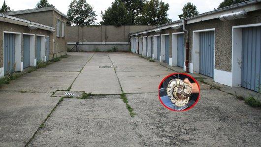 In Düsseldorf haben Anwohner am Wochenende eine Königspython an ihren Garagen gefunden.