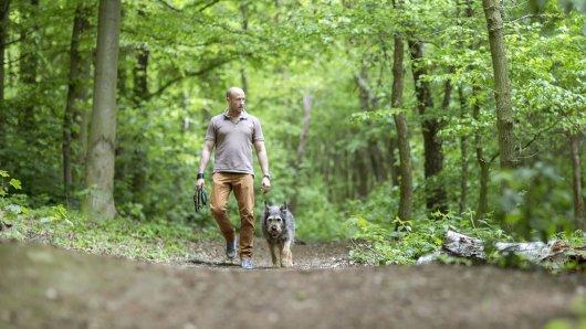 Ein Mann aus Castrop-Rauxel in NRW ging mit seinem Hund spazieren. Dann erlebten sie etwas Schreckliches. (Symbolbild)