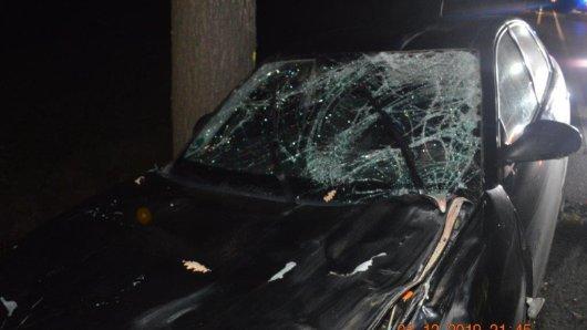 Zwei junge Frauen waren gerade mit ihrem Auto auf der B58 in NRW unterwegs, als plötzlich ein riesiges Tier vor ihnen über die Straße läuft. Es kommt zum fatalen Crash.