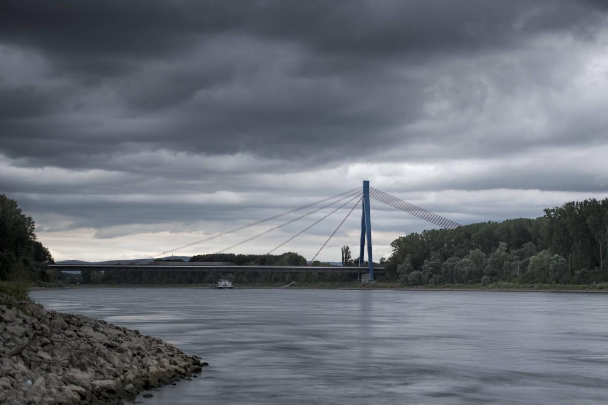 Hund: Frau entdeckt verängstigten Vierbeiner auf dem Rhein