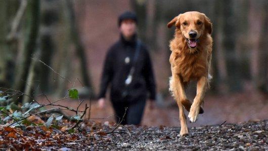 Eine Frau hatte in NRW mit ihrem Hund ein übles Erlebnis. (Symbolbild)
