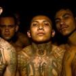 Mitglieder der Mara Salvatrucha posieren vor der Kamera. Die Bande gilt als aggressivste Gang in ganz Mittel- und Südamerika. Kommen die Gangster bald auch nach NRW?