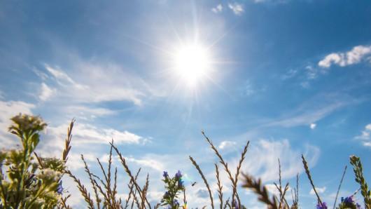 Das Wochenende in NRW soll mal wieder richtig sonnig und warm werden.