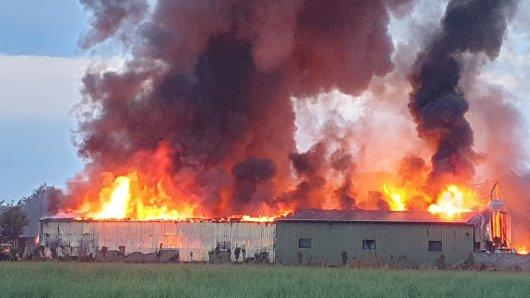 NRW: Vollbrand in einer Lagerhalle! Die Feuerwehr in Kaarst hatte am frühen Freitagmorgen einiges zu tun.