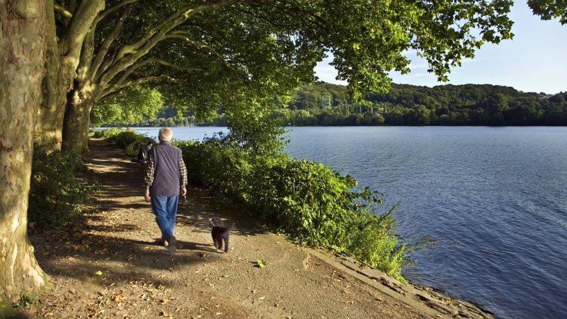 Hund in NRW: Mann geht an Fluss spazieren – dann tötet ein unscheinbares Tier seinen Terrier