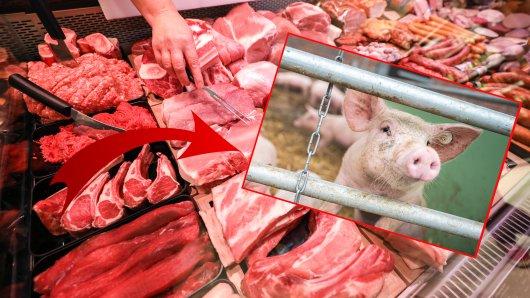 Rewe in Düsseldorf: An der Fleischtheke bekommen Kunden jetzt ungewöhnliche Videos in einer Filiale zu sehen.