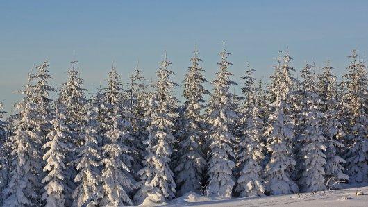 In NRW wird diese Woche bereits der erste Schnee erwartet. (Symbolbild)