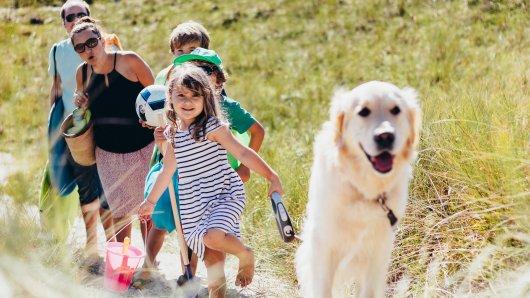 Zum Themendienst-Bericht «Es darf auch mal eine ganze Insel sein: Trends beim Ferienhaus-Urlaub» von Steven Hille vom 6. Juni 2017: Mit dem Vierbeiner auf Reisen: In etlichen Ferienhäusern dürfen auch Haustiere wohnen.