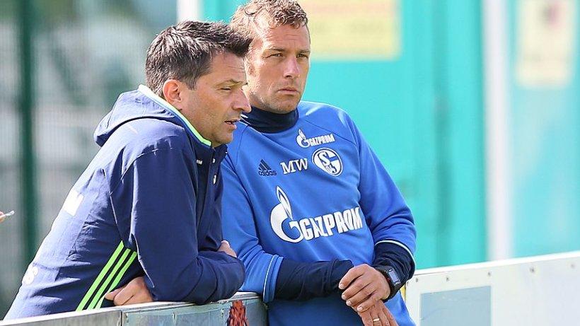 Schalke Jetzt