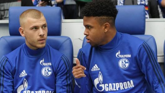 Beim kommenden Spiel des FC Schalke 04 in Augsburg könnte Max Meyer durch Weston McKennie ersetzt werden.