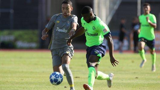 Die U19 des FC Schalke 04 verlor gegen den FC Porto zum Auftakt der UEFA Youth League.