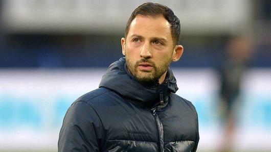 Immer größere Sorgen für Domenico Tedesco: Bei Schalke gehen die Stürmer aus.