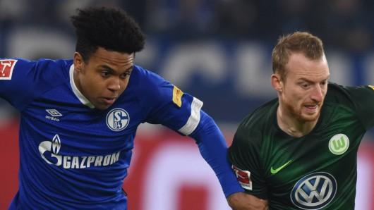 Schalke - Wolfsburg im Live-Ticker: Hier alle Infos zum Spiel!