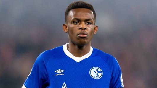 Der FC Schalke wurde für seine Transfer-Strategie kritisiert.