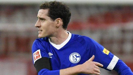Beim FC Schalke 04 wurde Sebastian Rudy zum großen Thema.