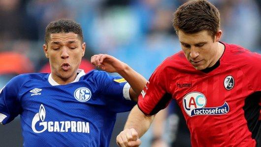 Schalke - Freiburg im Live-Ticker: Hier gibt's alle Infos zum Spiel!