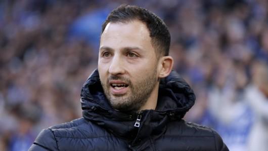 Domenico Tedesco freut sich schon auf das Spiel zwischen Schalke und Manchester City.