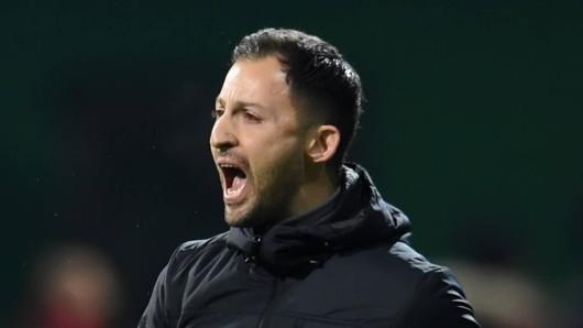 Doemnico Tedesco und der FC Schalke 04 verloren bei Werder Bremen am Freitagabend mit 2:4.