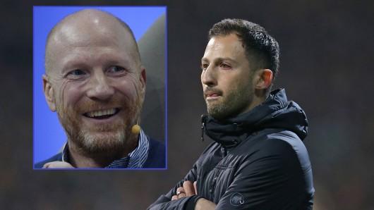 Matthias Sammer hat Schalke-Coach Domenico Tedesco in den höchsten Tönen gelobt.