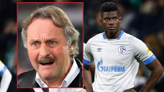 Peter Neururer weiß: Für die schwache Saison des FC Schalke 04 gibt es viele Gründe.