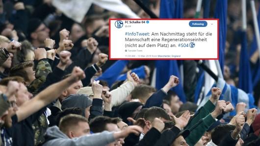 Einige Fans des FC Schalke 04 waren über diesen Tweet alles andere als erfreut.