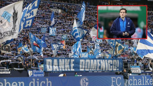 Schalke-Profi Sebastian Rudy kritisiert die Fans.