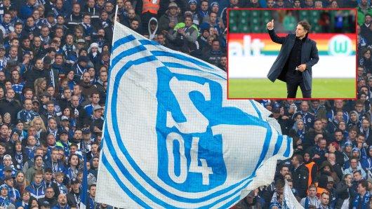 Kommt Bruno Labbadia im Sommer zum FC Schalke 04?
