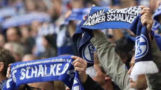 Die Fans des FC Schalke waren nach dem Spiel gegen Frankfurt bedient.