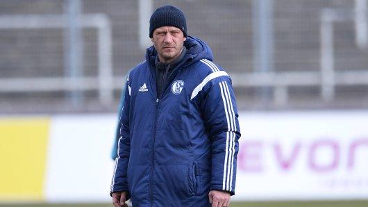Jörg Böhme hat sich als Kandidat für den Trainerposten auf Schalke ins Gespräch gebracht.