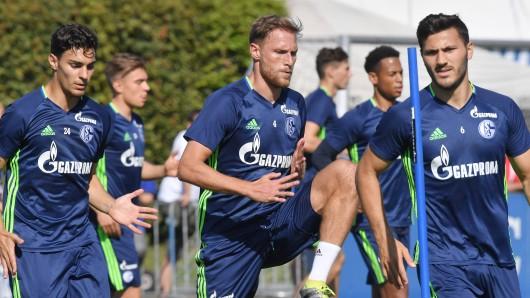 Drei Eigengewächse des FC Schalke 04: Kaan Ayhan, Benedikt Höwedes und Sead Kolasinac.