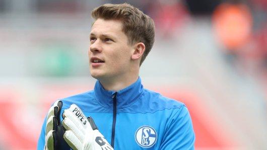 Alexander Nübel steht auch in der kommenden Saison im Tor des FC Schalke 04.