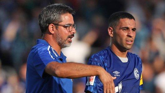 Twente - Schalke im Live-Ticker: Hier alle Infos!