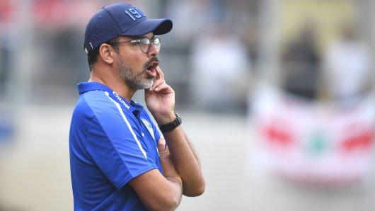 David Wagner, Trainer des FC Schalke 04.