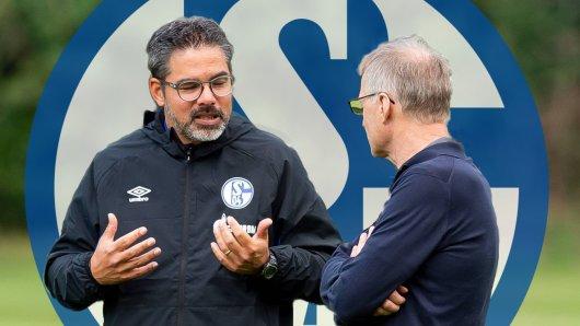 Uneinigkeit beim FC Schalke 04: Wagner und Reschke diskutieren über die Verpflichtung von Philipp Max.