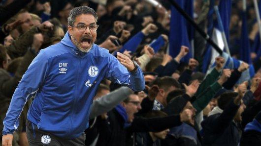 David Wagner macht die Fans des FC Schalke 04 heiß auf den Bayern-Kampf.